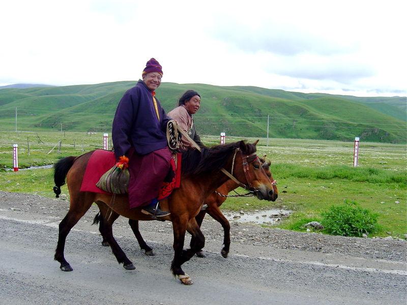 Yushu 1 231