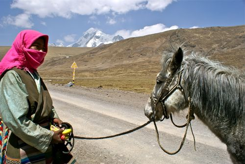 Nomad woman with her horse