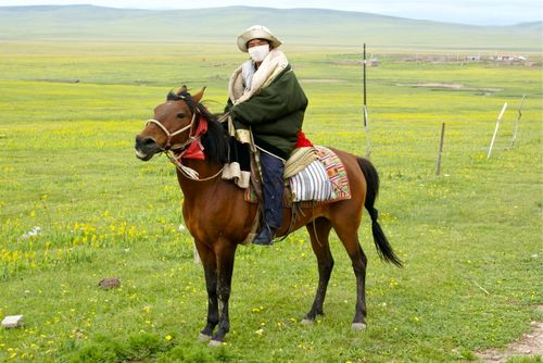 Mongolian on horseback