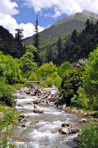 River in Pelyul