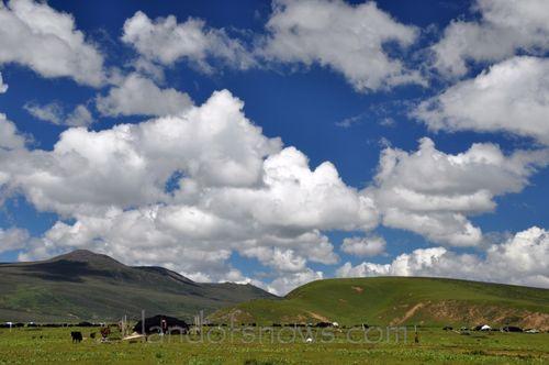 nomadic grasslands near Litang