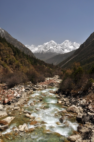 Tibet in spring