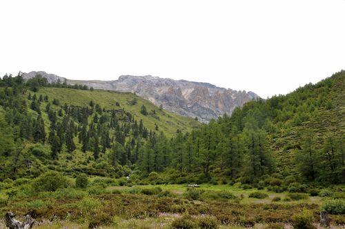 Luorong Grasslands
