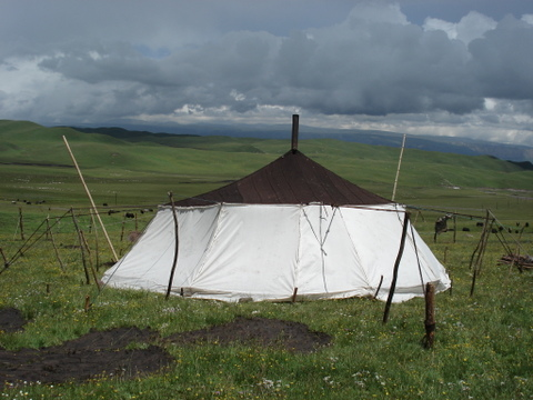 Grassland_tent