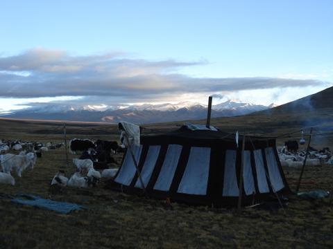 Nomad_tent_near_xinghai